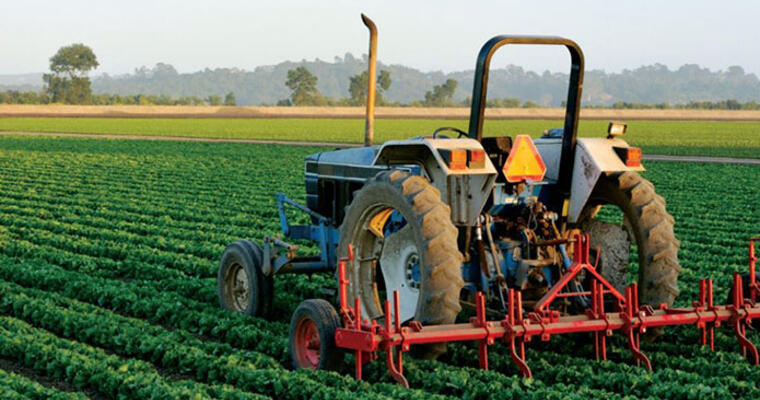 Diner concerns about food production practices